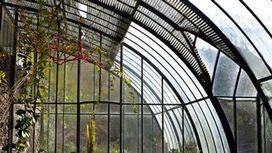 Les Serres, entre architecture et botanique - RTS.ch | Francisco Muzard | Scoop.it