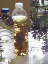 Parts of a bird nest in a nature bottle | Teach Preschool | Scoop.it