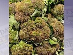 BBSRC mention: Broccoli could help fight arthritis | BIOSCIENCE NEWS | Scoop.it