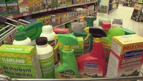 Du poison dans nos jardins - Dimanche 15 Mai 20h40   OGM, Pesticides, Les alternatives et les problèmes de l'agriculture chimique   Scoop.it