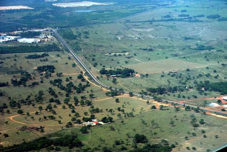 Em busca de soluções para o desmatamento - Nortão Dia 6 – | Geoflorestas | Scoop.it