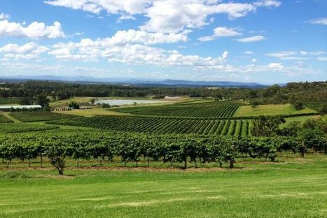 #Wine makers urged to plan for generational change   Vitabella Wine Daily Gossip   Scoop.it
