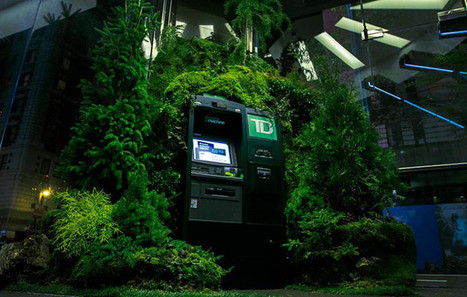 TD Bank invente le distributeur qui plante des arbres | streetmarketing | Scoop.it