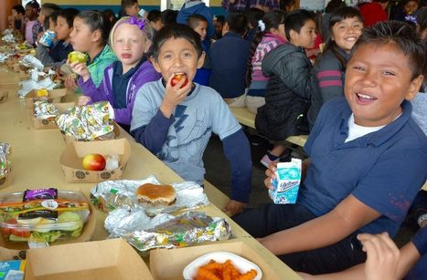 How One Groundbreaking Set of Rules is Changing the Food in L.A. Schools and the System Behind It | sustainablity | Scoop.it