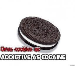 Oreo cookies as addictive as cocaine   Weight Loss   Scoop.it