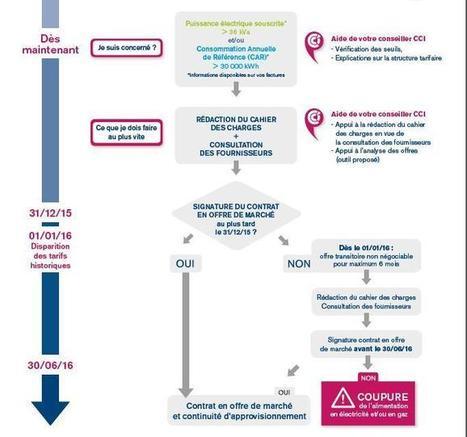 Fin des tarifs historiques de gaz et d'électricité , Chambre de Commerce et d'Industrie du Gers | Entreprises et Economie du GERS | Scoop.it