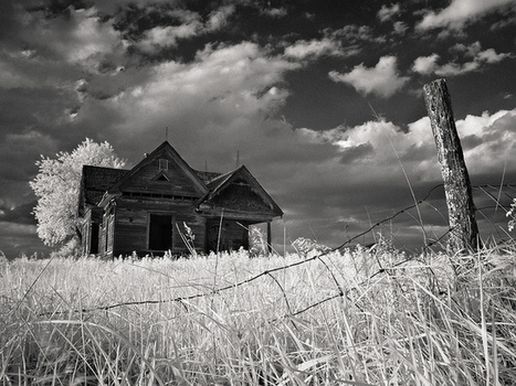 Black and White Photography by Rodney Harvey | Photography tips and tools | Scoop.it
