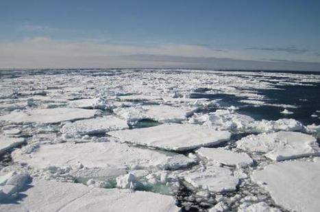 El océano Ártico registra las temperaturas más altas en 44.000 años | Las Personas y el Medio Ambiente. | Scoop.it