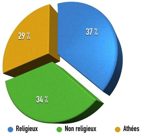 Les musulmans en France, combien de divisions ?   Brèves de scoop   Scoop.it