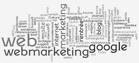 Le métier de Webmarketer : Générer et augmenter le trafic du site ! | BeSocialWeb | Scoop.it