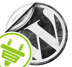 WordPress Premium Plugins WishList Products | WordPress Google SEO and Social Media | Scoop.it