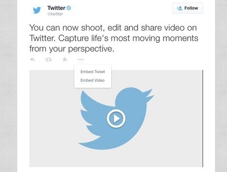 You Can Now Embed Twitter Video On Your Website | Content | Scoop.it
