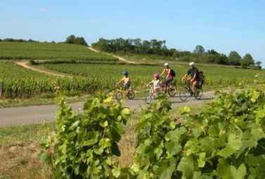 Tout un programme pour le pont du 1er Mai ! - Magazine du vin - Mon Vigneron | Agenda du vin | Scoop.it