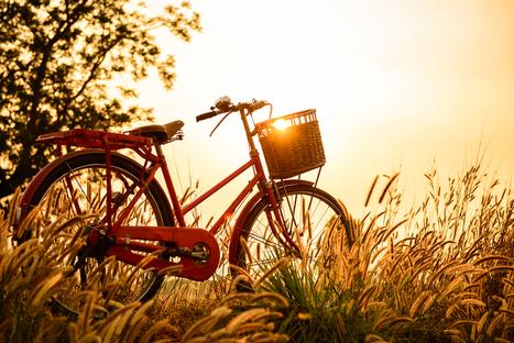 Cette année, il nous manque 30 secondes de printemps ! | Chronique d'un pays où il ne se passe rien... ou presque ! | Scoop.it