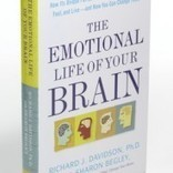 Book Review - The Emotional Life of Your Brain, Part 2 | Awareness in Action | Meditation Research | Scoop.it