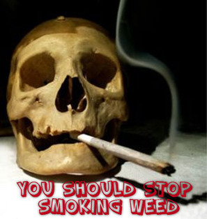 How to Stop Smoking Weed – The Viewpoint   How to Stop Smoking Weed  The Viewpoint   Scoop.it