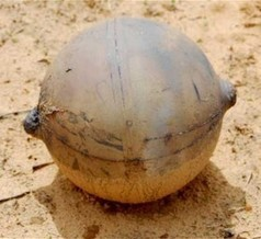 Space Ball Drops on Namibia: NASA, ESA to Investigate Crash | Technoculture | Scoop.it