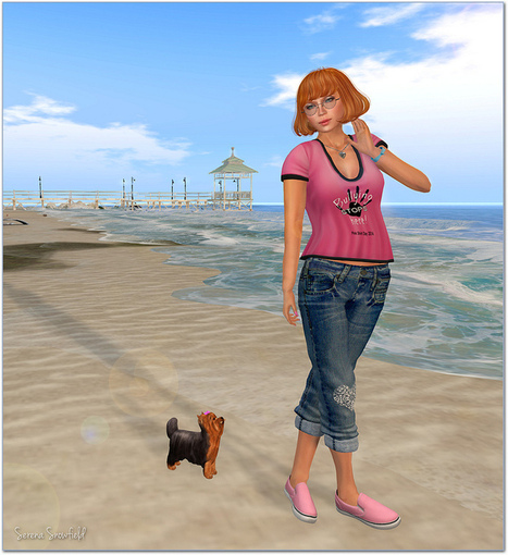 Bullying Stops Here! | Meri - first and second life aggregator | Scoop.it