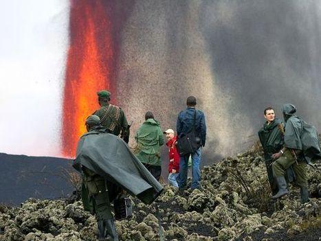 Recent Natural Disasters List December 1, 2011 | World Disaster Report | Recent Natural Disasters | Scoop.it