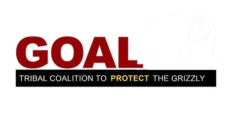 Goal-Guardians - Endangered Grizzly Bears | Endangered Species Act | Natural History, Environment, Science, & Robots | Scoop.it