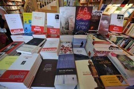 La littérature marchande et conformiste | We are the Birds of the Coming Storm | Scoop.it