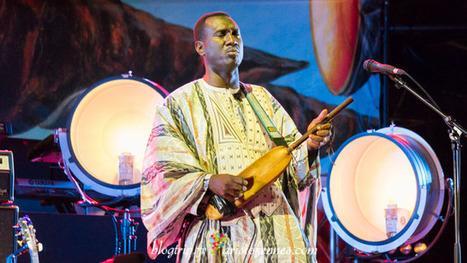 Jazz y música africana en Vienne Francia   mochilero   Scoop.it