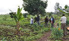 Kenyan TV show ploughs lone furrow in battle to improve rural livelihoods | Agricultural Biodiversity | Scoop.it