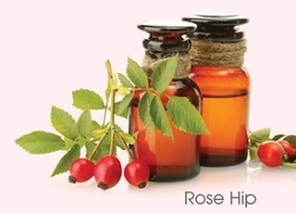 Rosehip Oil: Rosehip Oil Benefits in Improving Skin With Natural Care | c6 carbon | Scoop.it