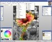 Top 10 Free Photo Editors forWindows (Free) | GHS library | Scoop.it