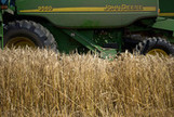 Crop Insurers' $14 Billion Some See as Money Laundering - Bloomberg | Laundry Services | Scoop.it