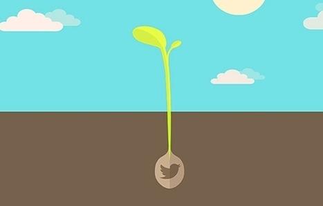 5 Ways to Use Twitter Beyond the Basics   YoungEntrepreneur.com   DJK Reversal   Scoop.it