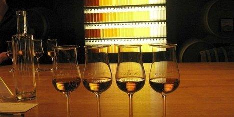 Cognacs Camus : le circuit touristique primé par Trip Advisor | Actualités du Cognac | Scoop.it