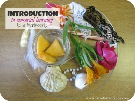 What is Montessori Sensorial? | Learn through Play - pre-K | Scoop.it