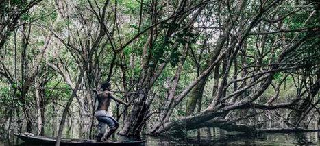 Au fin fond de l'Amazonie | arts premiers | Scoop.it