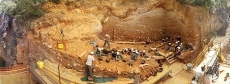 Para entender la paleoantropología. 3ª parte: La sistemática   Afán por saber   Afán por saber   Scoop.it