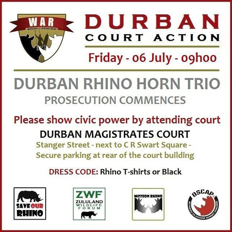 Durban Rhino Horn Trio Prosecution Commences | What's Happening to Africa's Rhino? | Scoop.it