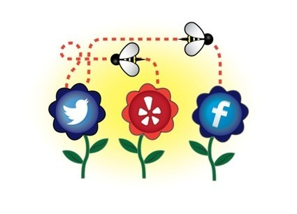 Social Marketing Management | Consulting Services | Scoop.it
