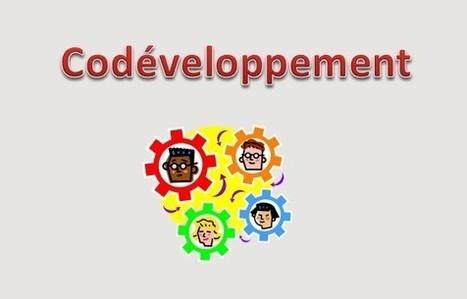 Le Codéveloppement professionnel, vous connaissez? | alter management | Scoop.it