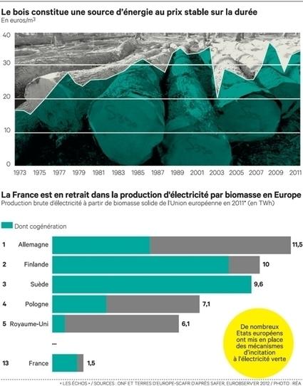 La Picardie relance safilière bois grâce à la cogénération   Energies Renouvelables scooped by Bordeaux Consultants International   Scoop.it