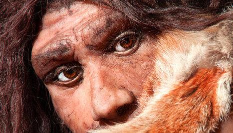Des gènes néandertaliens inégalement répartis | Merveilles - Marvels | Scoop.it