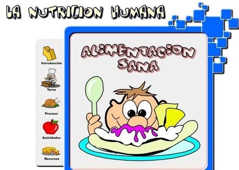 La nutrición humana. Alimentación sana | Educación Física. Compartiendo en la Red | Scoop.it