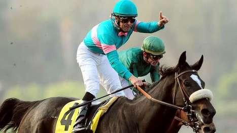 Catching up with the fabulous Zenyatta, horse racing's queen | Horse Racing News | Scoop.it