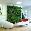Indoor Office Plants | Artificial Outdoor Plants | Scoop.it