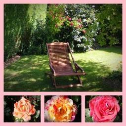 Supprimer une Souche d'Arbre avec de l'Ail - Entretenez vos plantes et votre jardin avec les conseils d'entretien du jardin et astuces de jardinage du Village Ferm'Adour | Gite et Landes | Scoop.it