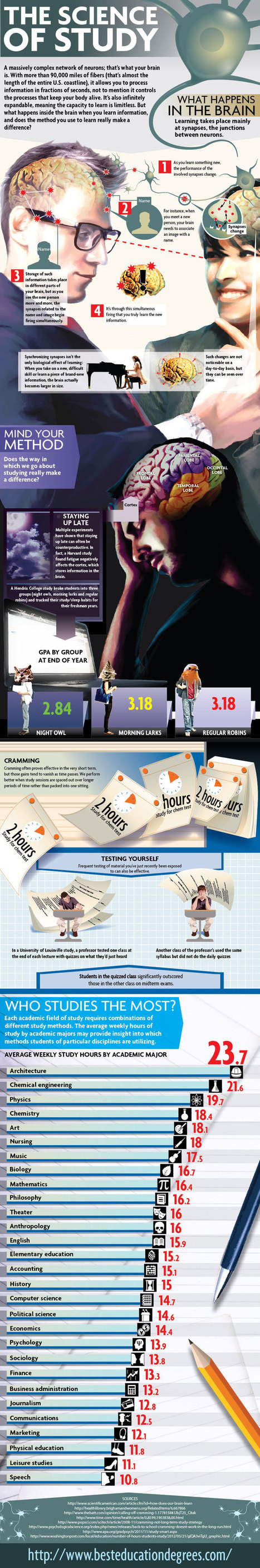 What Happens to Our Brain When Learning Occurs Infographic | e-Learning Infographics | we-Learning | Scoop.it
