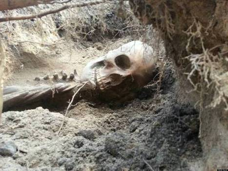 Couple Finds Ancient Skeleton In Backyard, May Have To Foot $5,000 Excavation Bill | Communities of the World | Scoop.it
