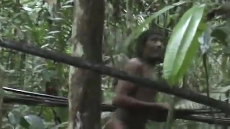 Brazil Seeks to Save Isolated Amazon Tribe Threatened by Loggers | National Geographic | Kiosque du monde : Amériques | Scoop.it