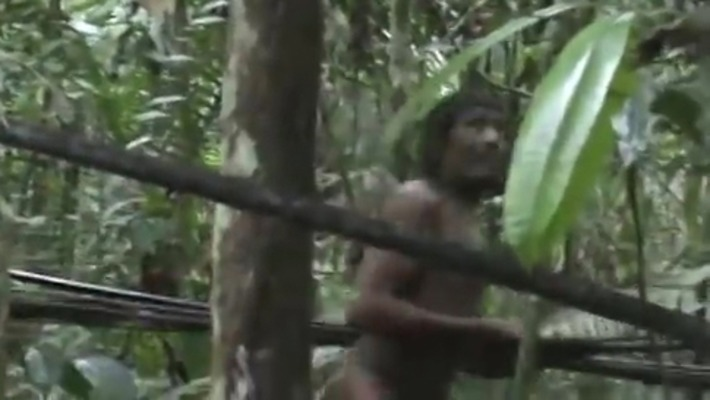 Brazil Seeks to Save Isolated Amazon Tribe Threatened by Loggers | National Geographic | Amériques | Scoop.it
