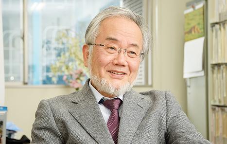 Nobel de Medicina de 2016: ¿Quién es Yoshinori Ohsumi y por qué ha ganado el premio más importante de la medicina actual? | Salud&Medicina | Scoop.it