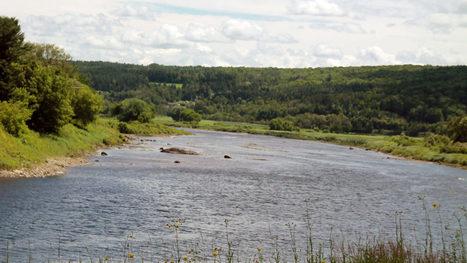 Rivière-Chaudière : les risques de relargage d'hydrocarbures diminuent | EnBeauce.com | Cinzia Zugolaro - sferalab | Scoop.it